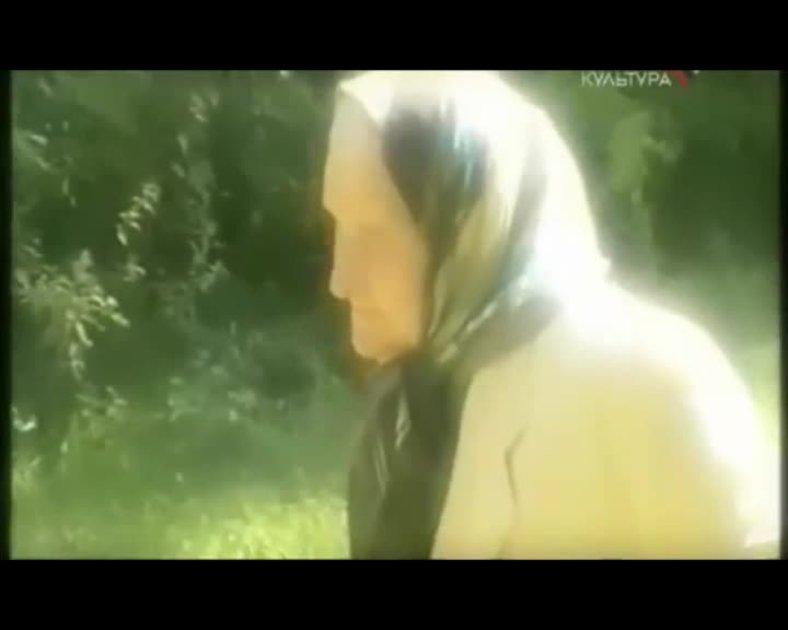 Художник Елена Волкова